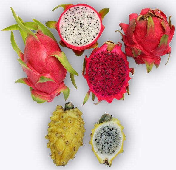 Pitaya ή Dragon fruit