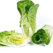 Κινέζικο λάχανο