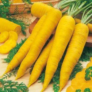 κίτρινη σάρκα