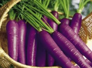 τα πρώτα καρότα