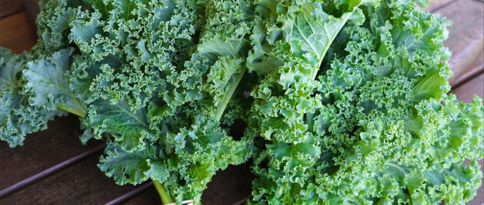 Το kale ή αλλιώς λαχανίδα, γενικά , είναι εξαιρετικά ωφέλιμο για την υγεία
