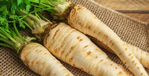 Ενώ η ρίζα της παστινάκας είναι βρώσιμη, ο χειρισμός των βλαστών και των φύλλων του φυτού απαιτεί προσοχή