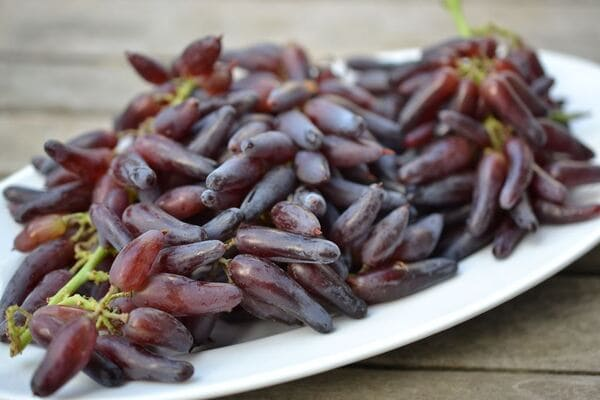 Witch Finger grapes